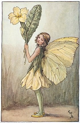 Primrose Therapy, Holistic Treatments. fairy
